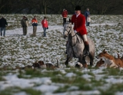 Beverley Boxing Day Hunt by Roger Spink