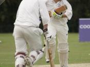 cricket-001