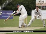 cricket-006