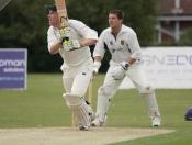 cricket-008
