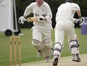 cricket-012