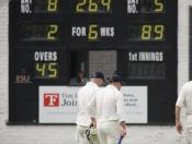 cricket-014