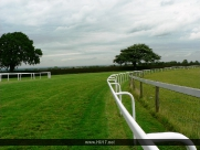 Beverley Race Course