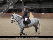 Showjumping @ Tickton Hall Stables