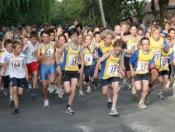 fun-run-start