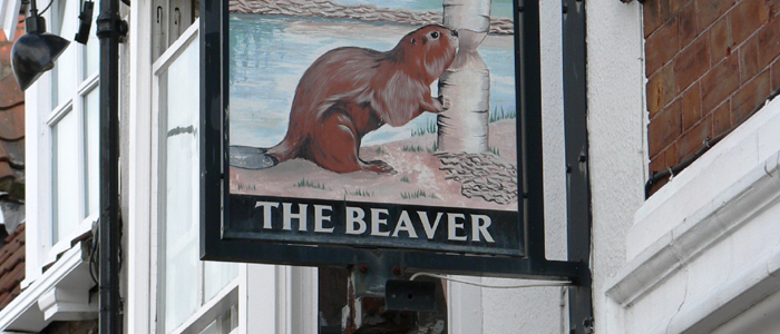 The Beaver in Beverley offers not only a good pint but live sports, live music and karaoke. The Beaver also serves a selection of bar meals and coffees.