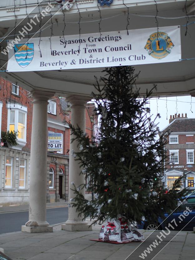Beverley_Lions_Tree