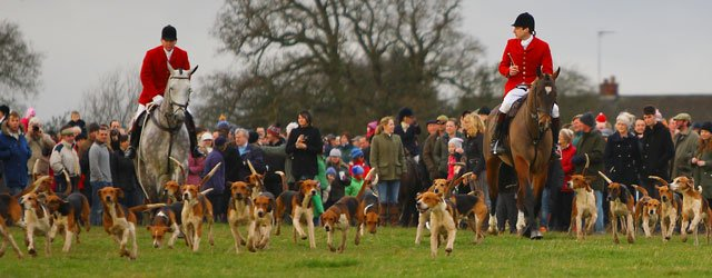 Boxing Day Hunt, Beverley Westwood