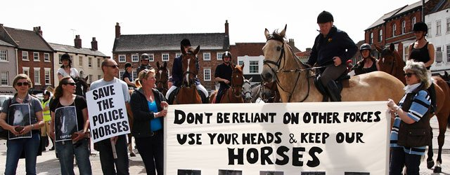 Horsing Around In Beverley : Protest Delivers Clear Message To Authorities