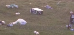 Local Les Ford stopped his taxi and got out to clear up after someone had left a lot of litter on Beverley Westwood.