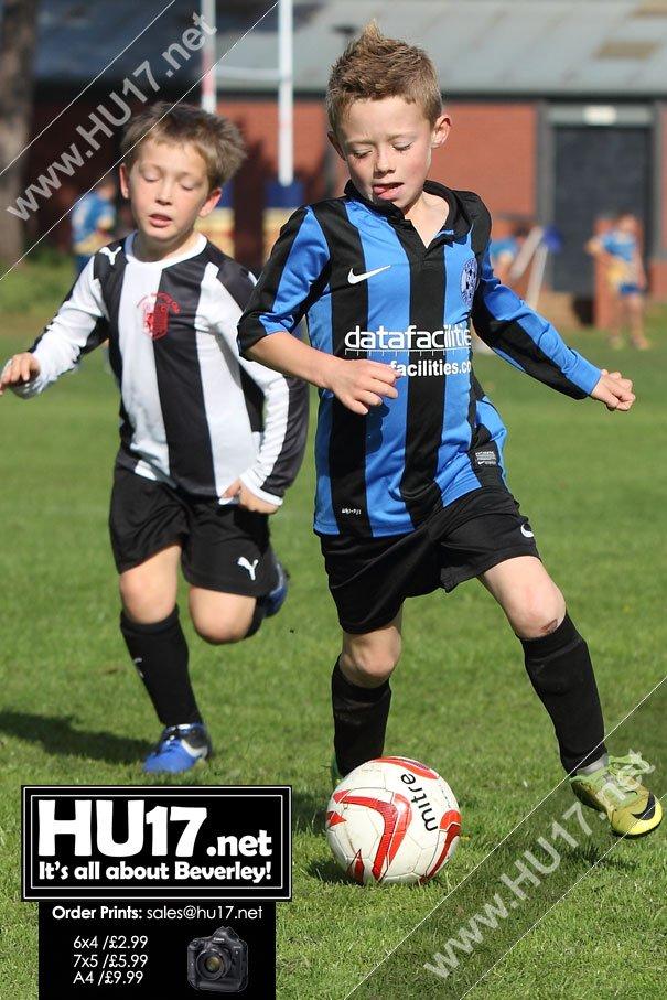 PHOTOS : Beverley Whitestar Panthers Vs Hessle Sporting Dragons
