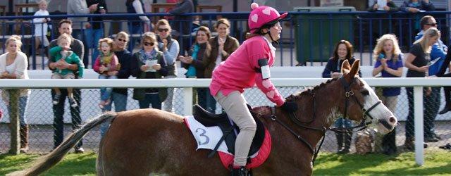 Holderness Hunt Pony : Race Day @ Beverley Racecourse