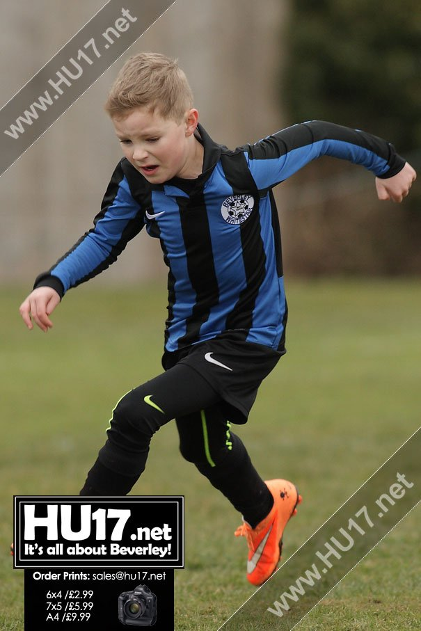 GALLERY : AFC Tickton Cobra's Vs Beverley Whitestar Tornadoes
