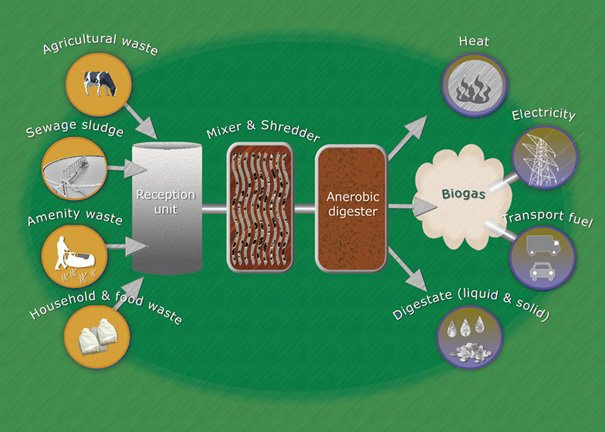 How Biogas Works, And What It Means To East Yorkshire