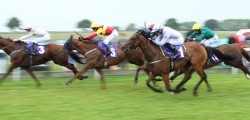 Clever Cookie thrust Peter Niven into the big time at Ascot at the weekend, but the North Yorkshire trainer's focus now turns sharply to Beverley on Tuesday.