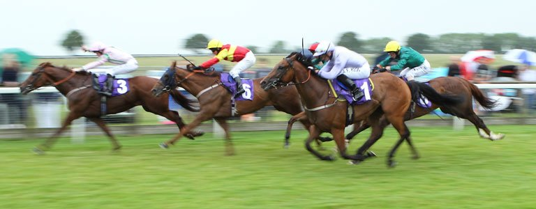 BEVERLEY RACES: Road On Track For Needler