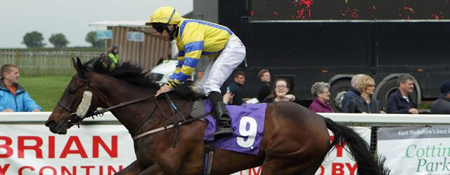 BEVERLEY RACES : Mimic In Full Cry