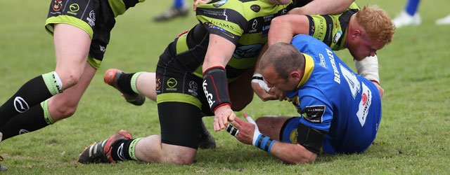 Blue and Golds Suffer Defeat at Hands of League Leaders