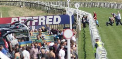Mother Nature will dictate which of Stuart Williams' runners compete in the £50,000 Totepool Beverley Bullet on Saturday.
