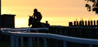 Beverley Racecourse Looks Set for the Season Closer