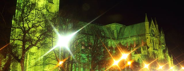 GALLERY : Beverley Minster Goes Green For MacMillan