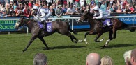 BEVERLEY RACES : Fandango The Star Attraction At Beverley