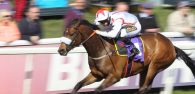 Singeur attempts to go one place better than last year in the big race at Beverley on Saturday, the £12,000 Coachman Caravans Quality Handicap.