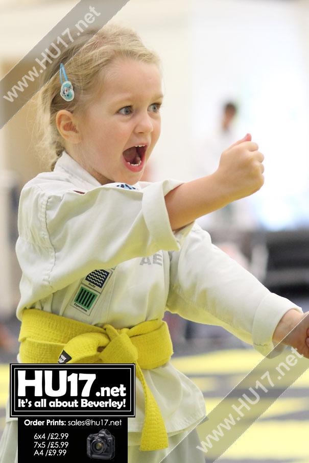 GALLERY : AEGIS Martial Arts & Leadership Academy Grading Session