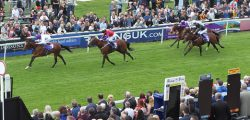 Alpha Delphini will this Saturday attempt to follow in the esteemed hoofprints of half-brother Tangerine Trees by winning the totescoop6 Beverley Bullet.