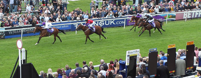 BEVERLEY RACES : Alpha Better Than Ever For Bullet Bid