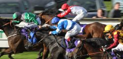 Muthmir could bring an exciting dimension to the totescoop6 Beverley Bullet on Saturday, August 27.