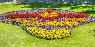 Design A Flower Bed At Sewerby Hall And Gardens