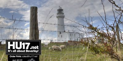 Countryside Events At Flamborough And Goole This Month