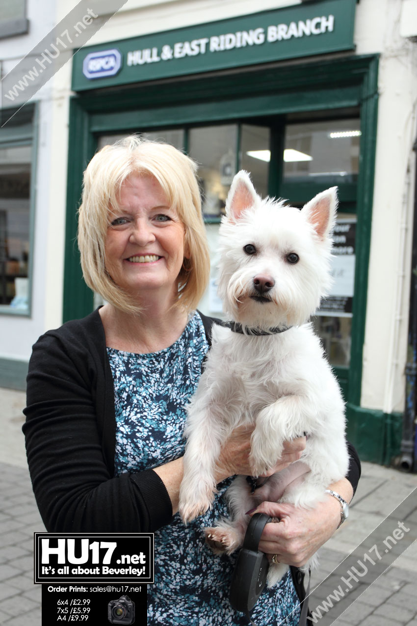 RSPCA Hull & East Yorkshire Branch Open Charity Shop In Beverley