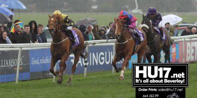 Haugen Hopes Eagle Can Soar At Beverley Curtain-Raiser