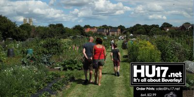 Learn More About Allotments At National Gardens Scheme Open Day
