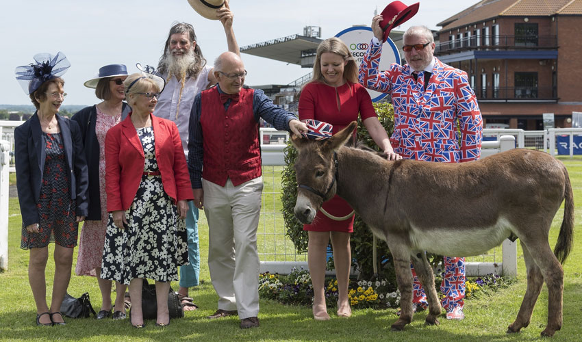 Donkey Derby Returns For A Very British Raceday At Beverley Racecourse