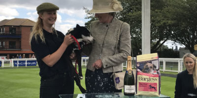 Beau Bounds To Bark Glory At Beverley