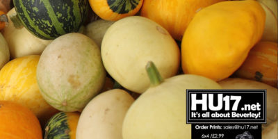 Hull Food Charter Launched To Address Inequalities Surrounding Food