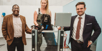 Fit4Dogs Sees Former Swimming Instructor Swap People For Pooches