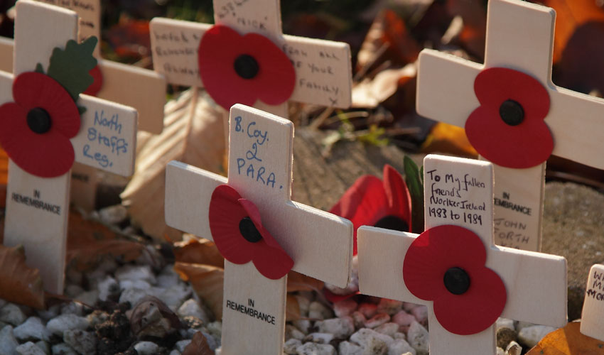 City To Pause And Reflect On 100th Anniversary Of The Armistice