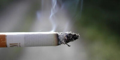 Illegal Cigarettes Totaling Over Half of Million Seized In Six Months