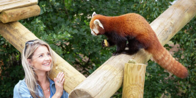 Helen Skelton Is Enchanted By Yorkshire Wildlife Park's New Red Pandas
