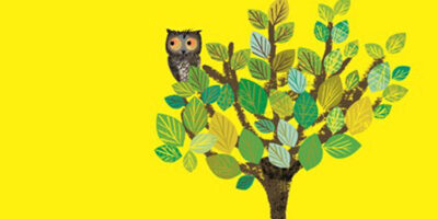 Wow! Said The Owl Inspires New East Riding Museums Webpage